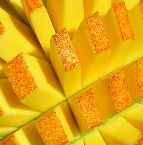 Mango - Cropped Version 2