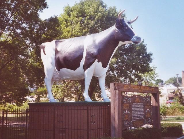 Giant Holstein
