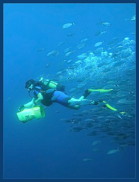 A diver in Mallorca