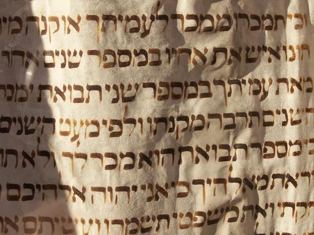 Brno Torah
