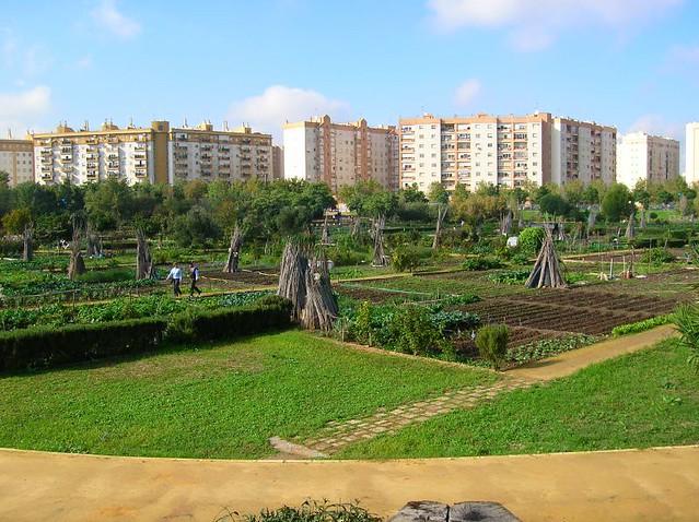 Parque de Miraflores (Sevilla). Verde sobre gris