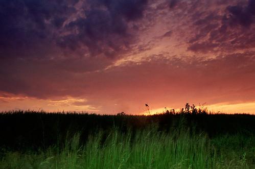 sunset twilight dusk magic hour otherworld naturesfinest superhearts