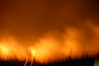Forest Fires | by RobW_