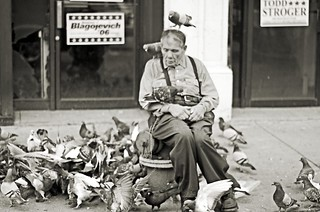the pigeon man. | by aestheticheart