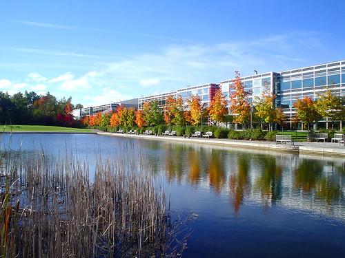 autumn pond ottawa nortel