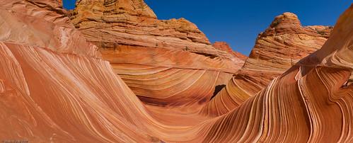 Вълната в Аризона