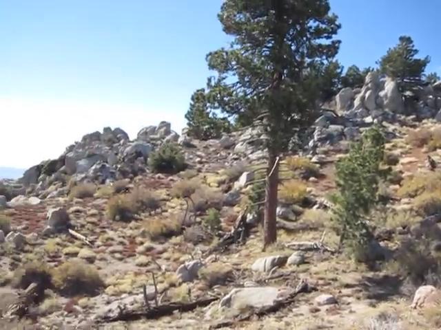 250_Toro-Peak