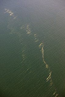 The Deep Water Horizon spill spans mile after mile, drifting to shore to coat marine life in sludge.