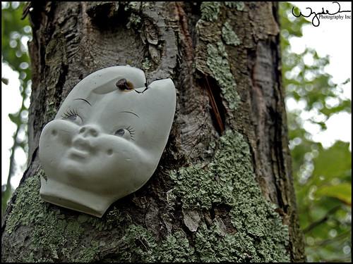 Doll Tree