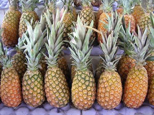 Abacaxi, piña, pineapple   by VIc Lic