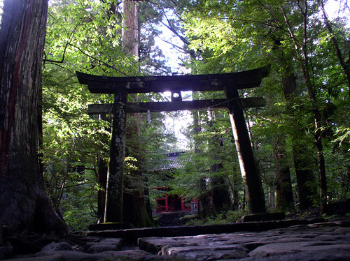 Temple in the Trees | by YoTuT