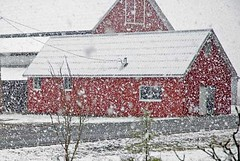 firstSnow-barn | by kitchenmage
