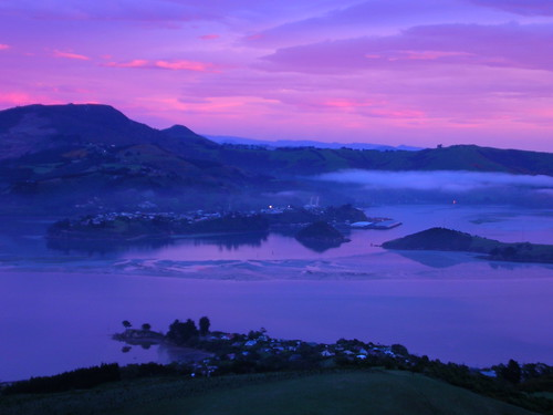 newzealand sunrise garden nhs southisland dunedin larnach castlelarnach