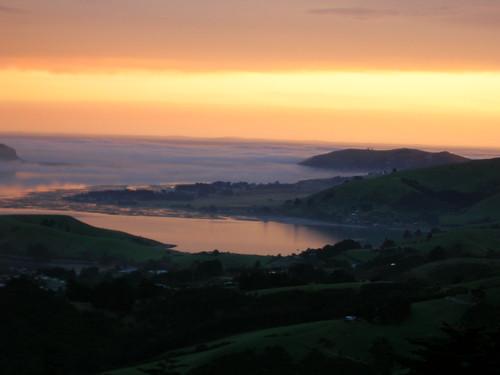 newzealand garden nhs southisland dunedin larnach castlelarnach