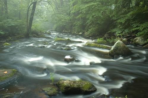 black water river chester camnats superhearts camnats070913 camnats071115water