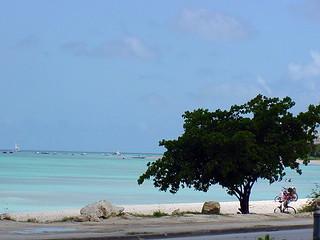 Idyllic Beach, Barbados