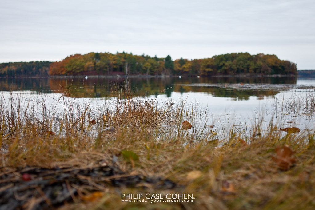 Great Bay by Philip Case Cohen