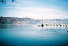 Pelican Marina