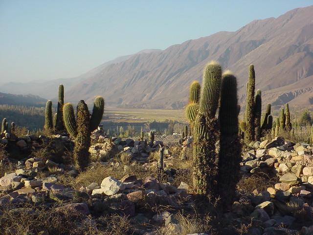 Pucará de Tilcara en  Quebrada de Humahuaca