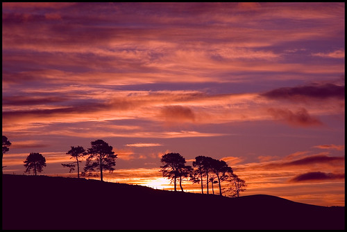 trees sky sunrise d50 scotland nikon aberdeenshire balloch alford cairnballoch stronehill