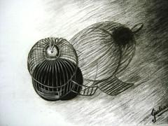 Drawing Charcoal Gaiola Vazia Desenho Carvao Sobre Tela Flickr