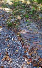 the path fades