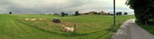 Bavarian Meadow Panorama by Dirk Paessler