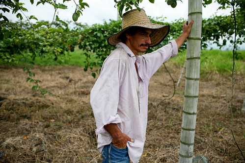 Farmer in field Colombia | by World Bank Photo Collection
