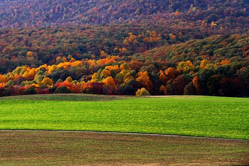 autumn maryland