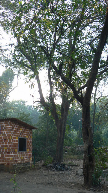 View near Karnala bird sanctuary's entrance