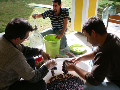 Homewine Makers/Workers