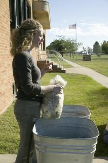 Yarn School: Jennifer washes fleece