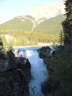 Athabasca Falls | by alpeck99_1