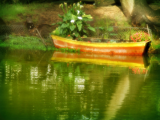 Pond Boat