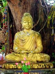 Kunaram Temple, Koh Samui, Thailand | by clayirving