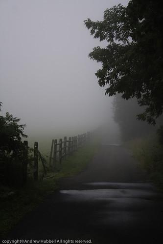 morning summer nature fog sunrise fence landscape flora canoneos350 ridgefieldtownpasture ©andhuballrightsreserved