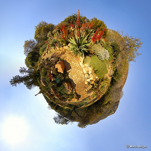 Botanical Garden Tiny Planet (Stereographic)