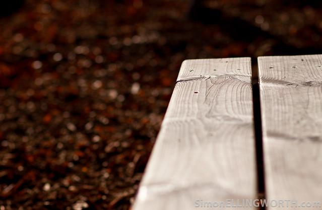 Autumninal Bench.jpg
