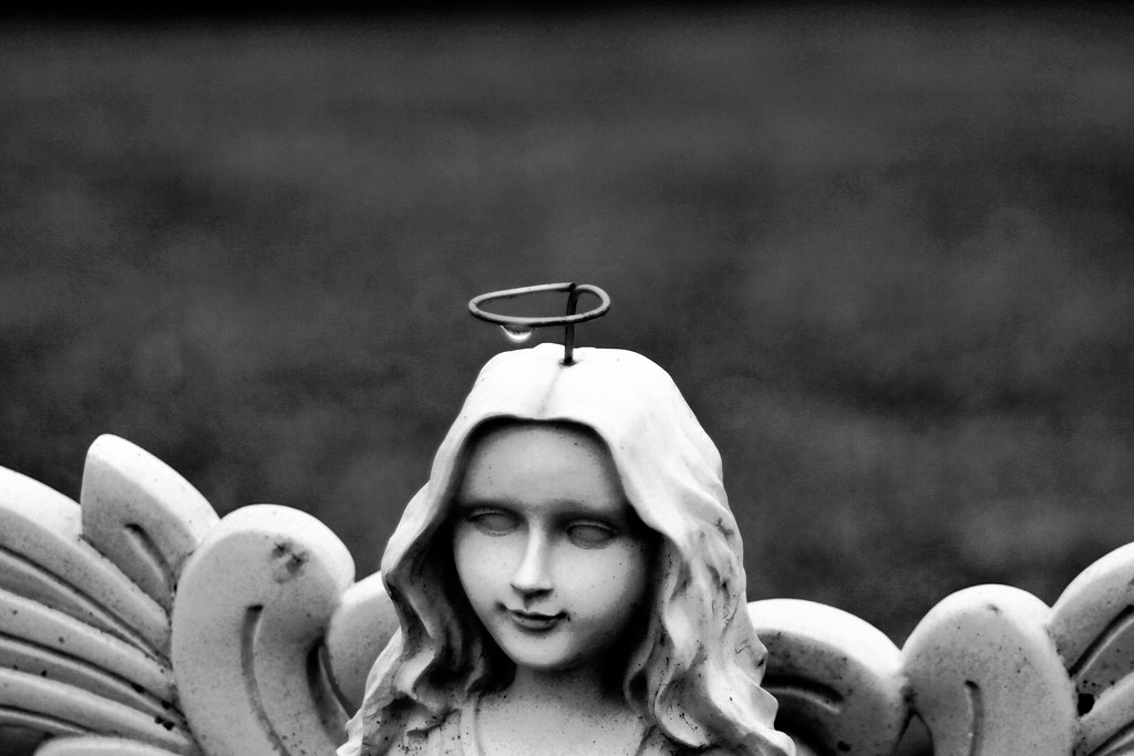 Evil angel it was such a damp day all day so the drop on h flickr - Free evil angel pictures ...