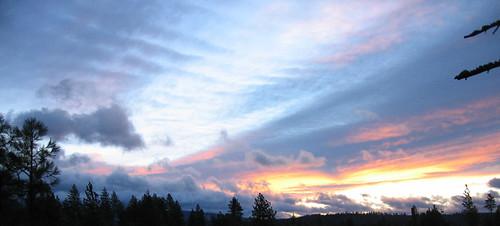 trees sky tree clouds sunrise mackerel windy chattaroy duringawindstorm