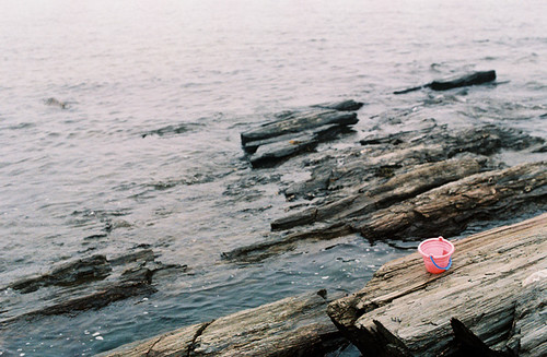 film : pink pail | by SouleMama