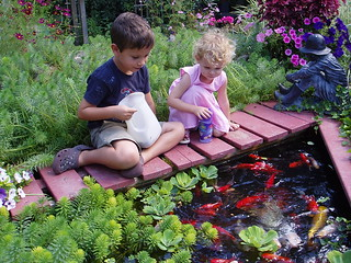 Feeding the Fish | by Mike Boon