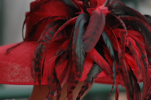 Derby Day Hats | by Kentucky Derby