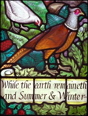 While the earth remaineth and Summer and Winter