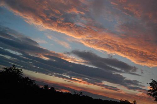 trees sunset sky orange cloud sun storm tree beauty clouds landscape gold nikon d40