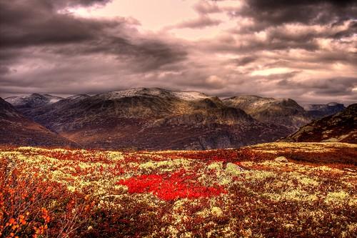 autumn nature colors norway canon wow eos colours hdr hemsedal kursiv 25faves 400d canoneos400d aplusphoto