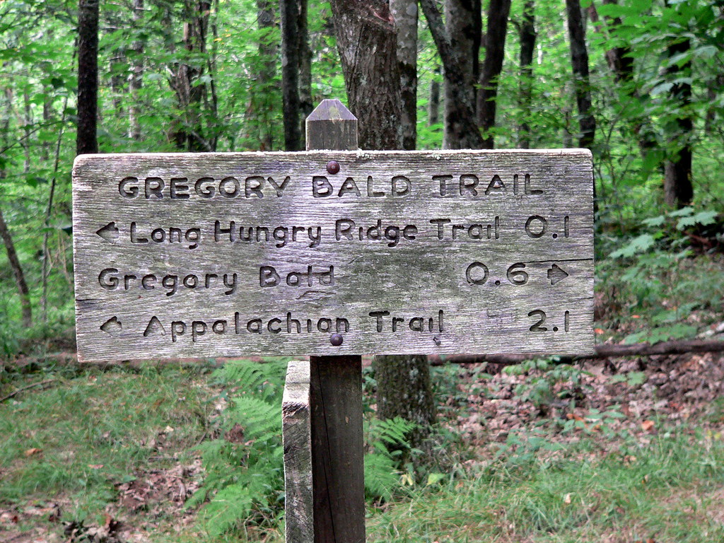 On the way to Gregory Bald