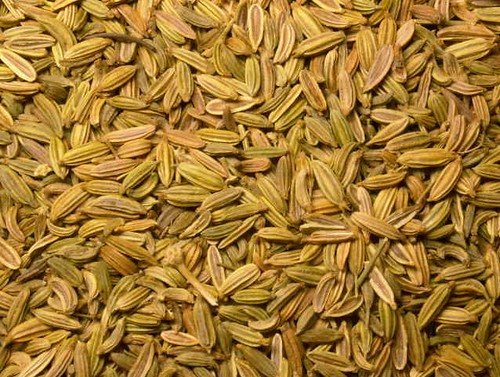 graines de fenouil - peyuta - Flickr