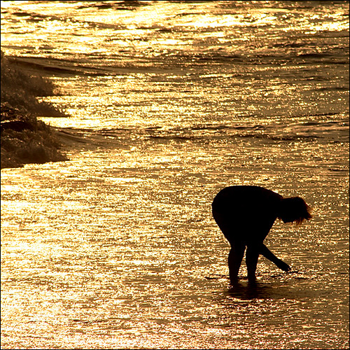 sunset beach silhouette vertical golden newjersey searchthebest cove nj capemay bliss jerseyshore sparkling capemayx diamondclassphotographer flickrdiamond solitaryjoy