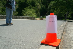 cone this way